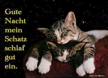 Guten Nacht Mein Schatz